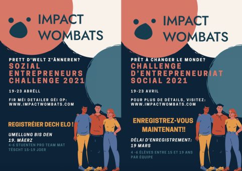 Social Entrepreneurship Challenge 2021 by Impact Wombats