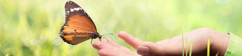 LuxFLAG lance un nouveau Label pour le Financement du Climat