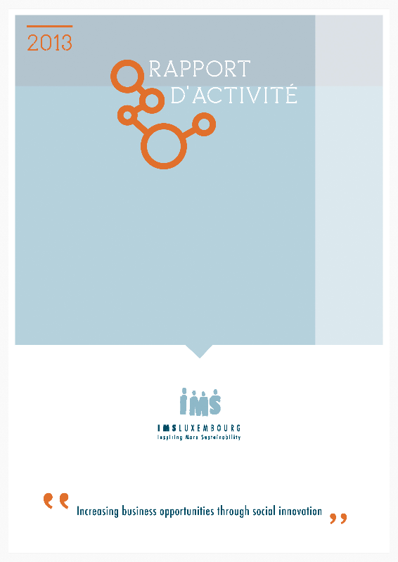 IMS Luxembourg Activity Report 2013