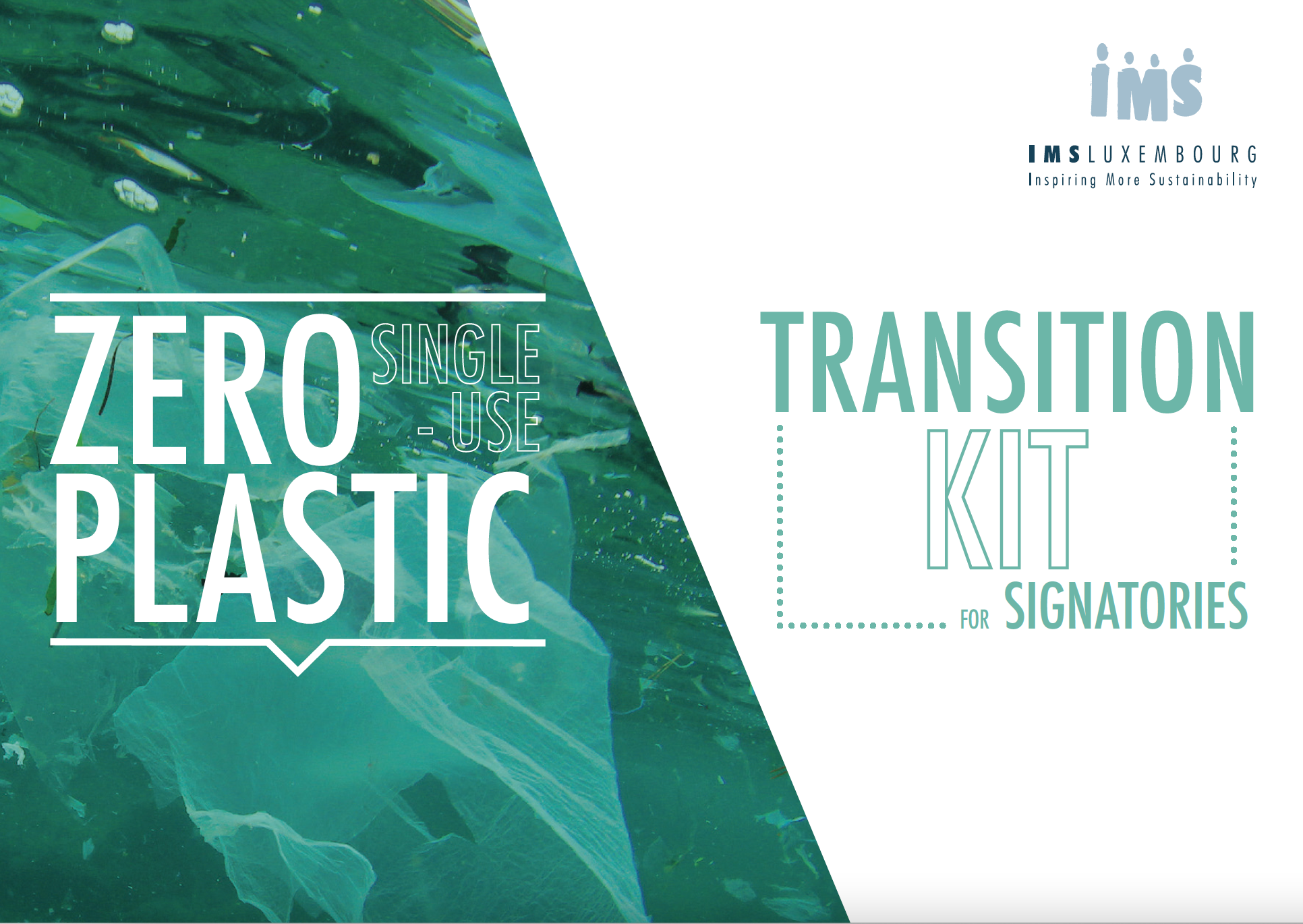 Transition kit for companies